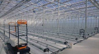 日本初の電解水設備を導入したオランダ式の太陽光利用型植物工場が高知県南国市にオープン