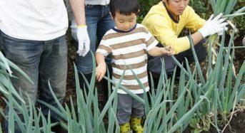 アグリメディア、収穫体験BBQなど新しいスタイルの農業施設を4月1日にオープン