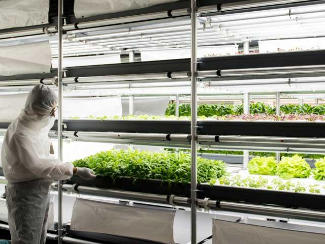 日栄インテックG、コンテナ型植物工場「スーパーアグリプラント」の販売を開始