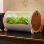 スマホ連動型のIoT水耕・植物工場キットの新ラインナップ「foop Lite」を販売開始