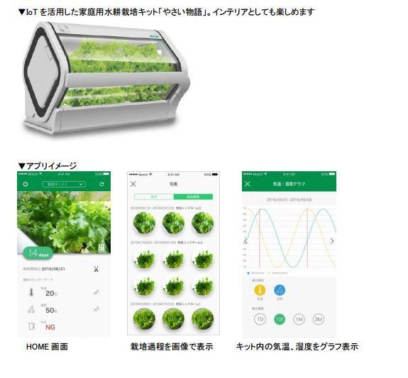沖縄セルラー電話、家庭用IoT水耕栽培・植物工場キット「やさい物語」を発売