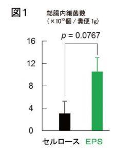 日東薬品工業、乳酸菌「ロイコ菌」が作る多糖に腸内細菌叢改善効果を確認