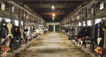 酪農・畜産ICTシステムのファームノート、JA全農・住友商事など4社から総額5億円の出資