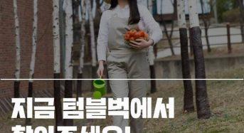 韓国ソウル市内に新たな屋上ファームがオープン。若い都市住民が支持