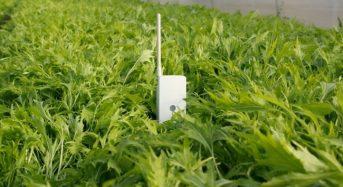 電子回路を印刷した農業用センサーシステム「SenSprout Pro」が発売