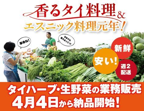 アライドコーポレーション、エスニック料理に使用する生ハーブ&野菜の販売事業を開始