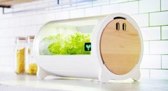アドトロンテクノロジー、IoT水耕栽培機「foop Lite」を期間限定で特別販売(6月1日~)