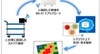 NTT東日本など、農業法人の生産性向上に向けたIoTに関する共同実証へ