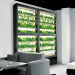 ディーグラット、超薄設計・壁面型の植物工場「SALAD WALL サラダウォール」の販売開始