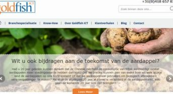 NTTデータ、ドイツ子会社itelligence社がオランダGoldfish ICTグループを買収