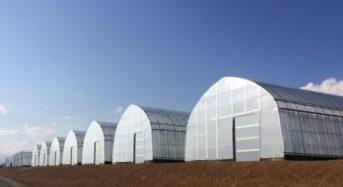 SRGタカミヤ、山梨県にパイプハウスによる「低コスト耐候性ハウス」55棟を建設