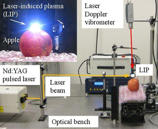 パルスレーザー照射にて青果物の品質を非接触・非破壊で評価するシステムを開発