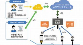 「水田水管理ICT活用コンソーシアム」を設立。IoTで管理コストを50%削減目標
