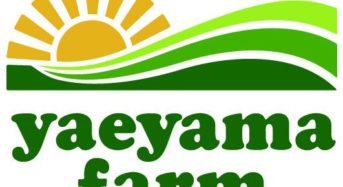沖縄やえやまファーム、農業総合研究所と農産物集荷場を開設