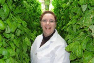 米国Living Greens、垂直式・噴霧栽培の植物工場プラントを拡大