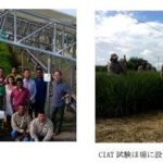 PSソリューションズと日立、コロンビアの国際研究機関で「e-kakashi」の実証実験を開始
