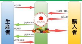 農家のための野菜のオンライン市場『831seri』をリリース