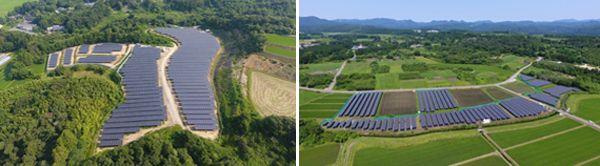 サステナジー・大和ハウス工業など、太陽光発電と農業を両立するソーラーシェアリングを開始