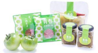 元JAL・客室乗務員がプロデュース、希少なグリーントマトのブランド「青春トマト」3種が本格発売
