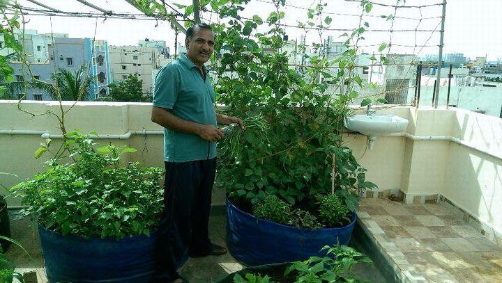 インド・テランガーナ州、消費者への都市型農業プロモーションを開始