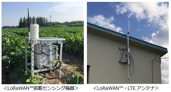 KDDIとシスコなど、帯広でIoTを活用した農業効率化の実証実験を開始