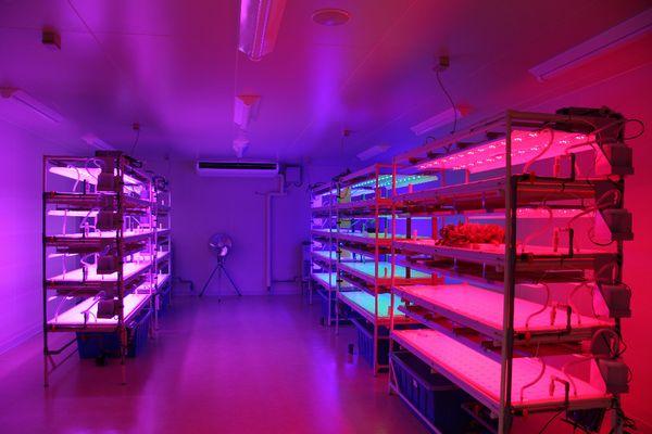静岡県、植物工場など農業技術の共同研究拠点「AOI-PARCアオイパーク」を開設