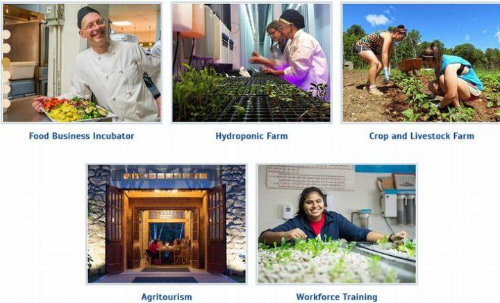 食品製造、水耕ファーム、畜産ファーム、アグロ・ツーリズム、起業家育成の5つの分野に分かれている。