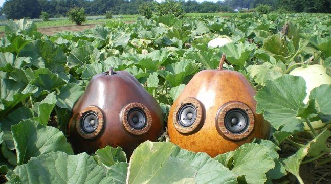 1年で僅か300個のみ・栃木産「かんぴょう」を利用したスピーカー「fucucci(フクッチ)」を販売