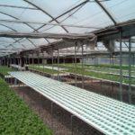 ベトナム・バクザン省、植物工場などハイテク農場に72億円の投資計画