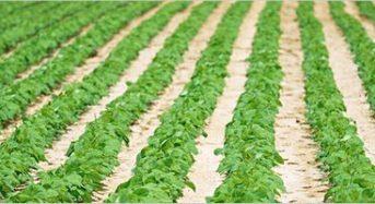 JA全農と三菱商事、海外市場を狙った農薬製造などの合弁会社を設立
