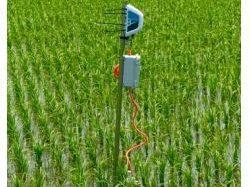 電通国際情報サービスISID、農業IoT事業のベジタリアに出資