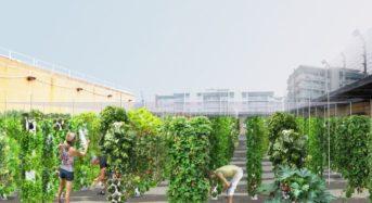 パリ市、2020年までに「グリーンシティー化」33haの都市型農場を整備する計画