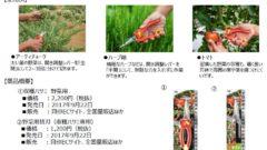 タケイファームと貝印が共同開発、「収穫ハサミ 野菜用」販売開始