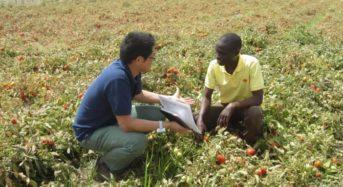 カゴメ、需要が拡大する西アフリカ市場の戦略拠点としてセネガルに加工用トマトの営農会社を設立