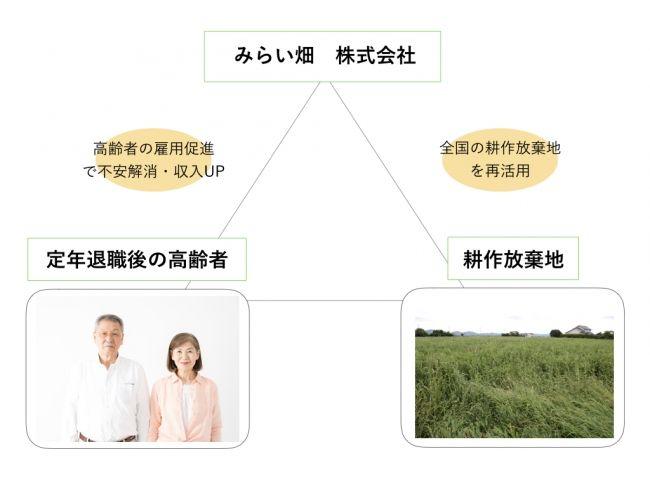 ボーダレス・ジャパン、耕作放棄地・地域の高齢者を活用したオーガニック野菜の生産を宮崎県・新富町で開始