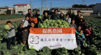 串カツ田中によるCSR活動「キャベツ リサイクル サークル」初収穫