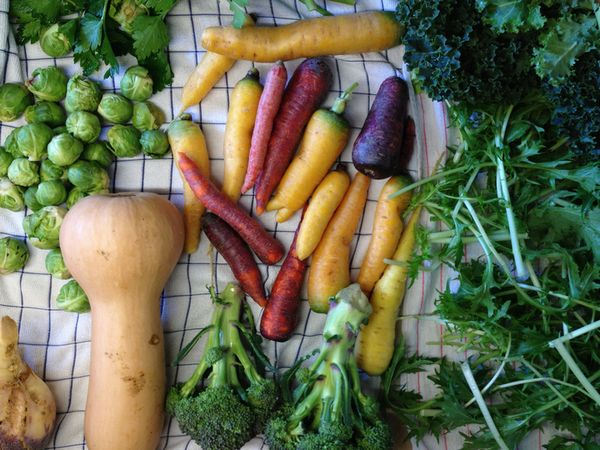 LOHAS型農業の可能性。NYC AgTech Week 2017から考える都市農業の「今」②