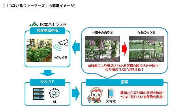 日本ユニシス、JA松本ハイランドとAI活用の直売所販売支援サービスの実証実験を開始