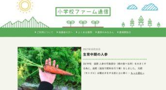 農業×ITベンチャーFARMFES、都会の学校でもマイ農場が持てる『小学校ファーム』を開始