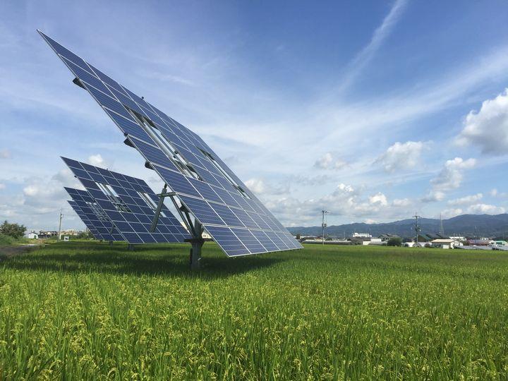 エグテックによるソーラーシェアリング・追尾式太陽光発電を水田に設置