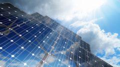 東急不動産など、大規模ソーラーシェアリング事業の太陽光発電所に着工。小麦・大麦栽培の両立