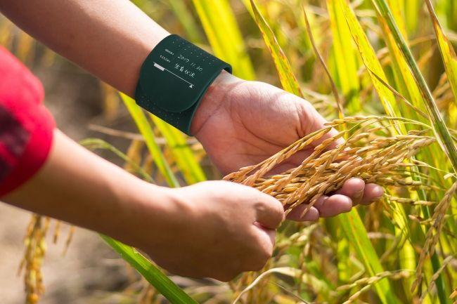 """腕に書く・ウェアラブルメモ """"WEMO(ウェモ)""""の発売。医療や農業現場でも活躍"""