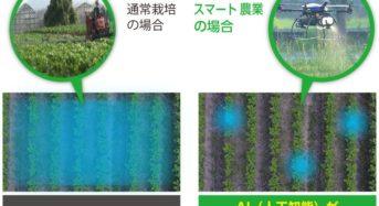 世界初、大豆栽培にてドローン活用・ピンポイントで農薬散布