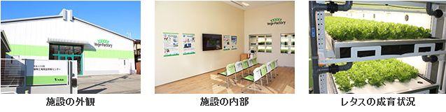 大気社、東京板橋に植物工場実証開発センターを開設。業務用の大型レタスや自動化技術の実証へ