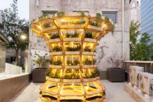 農業版レゴ・ブロック「Growmore」地産地消と快適空間を演出。植物工場にも応用