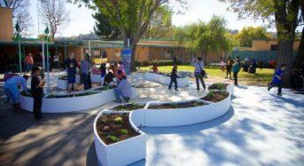米国デトロイト、500万ドル・100カ所の学校にてプランター栽培を設置