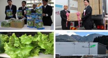 バイテックファーム薩摩川内、1日あたり1万5千株の大型 植物工場の商品初出荷