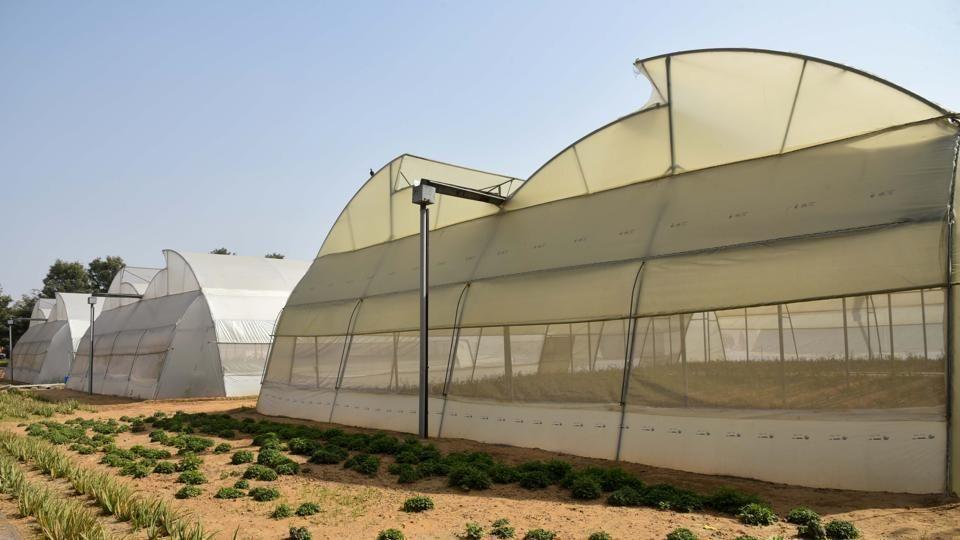 インド・ラージャスターン州が農業のハイテク化「イノベーションセンター」を開設
