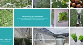 シンガポール政府による競争入札。植物工場などハイテク農業の入居8社が決定