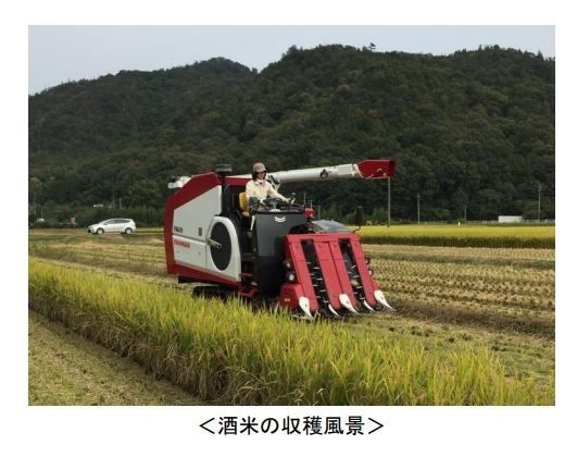 ヤンマー、営農・栽培支援を活用した酒米ソリューションを提供開始